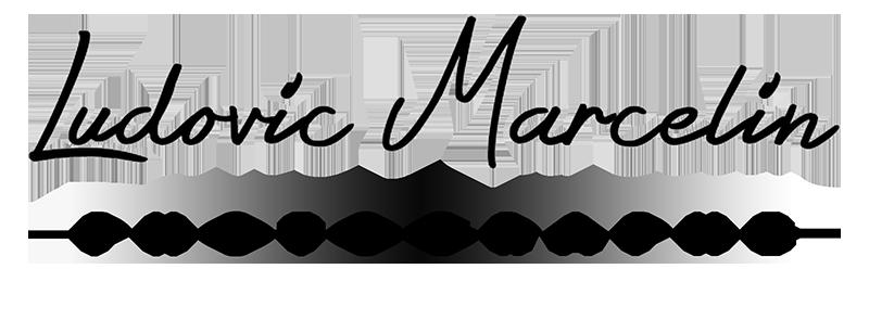 Logo Ludovic MARCELIN